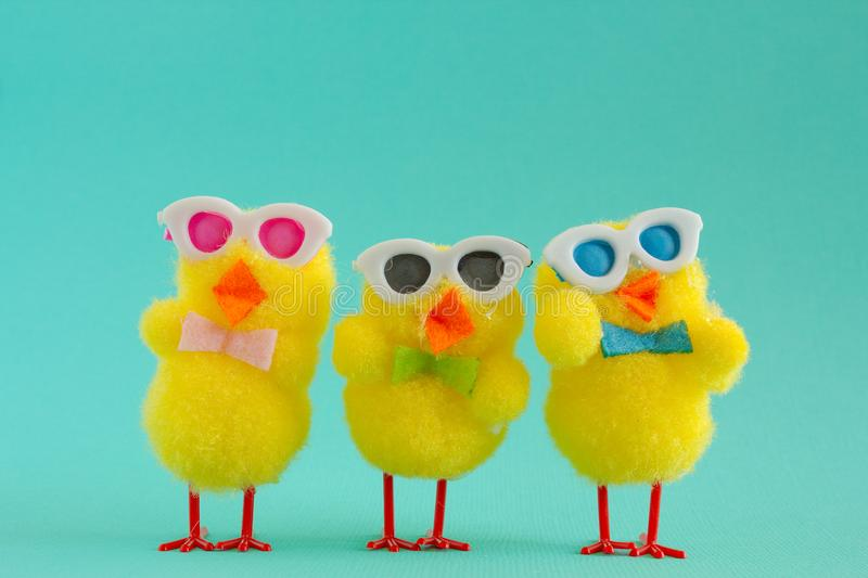 Three Groovy Chicks wearing sunglasses on a Aqua Background. Three groovy yellow fuzzy pom pom Easter chicks sporting sunglasses for a cool look on a aqua stock image