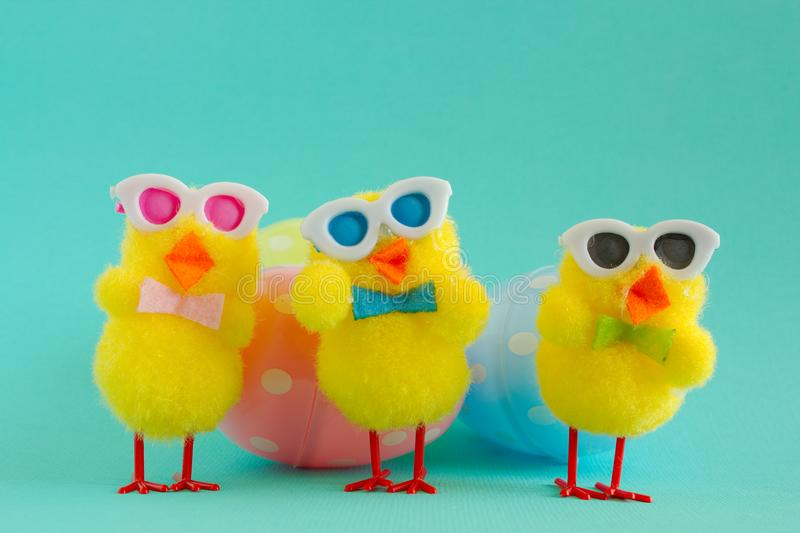 Three Groovy Chicks with Eggs on a Aqua Background. Three groovy yellow fuzzy pom pom Easter chicks sporting sunglasses for a cool look. Three eggs, one pink royalty free stock photo