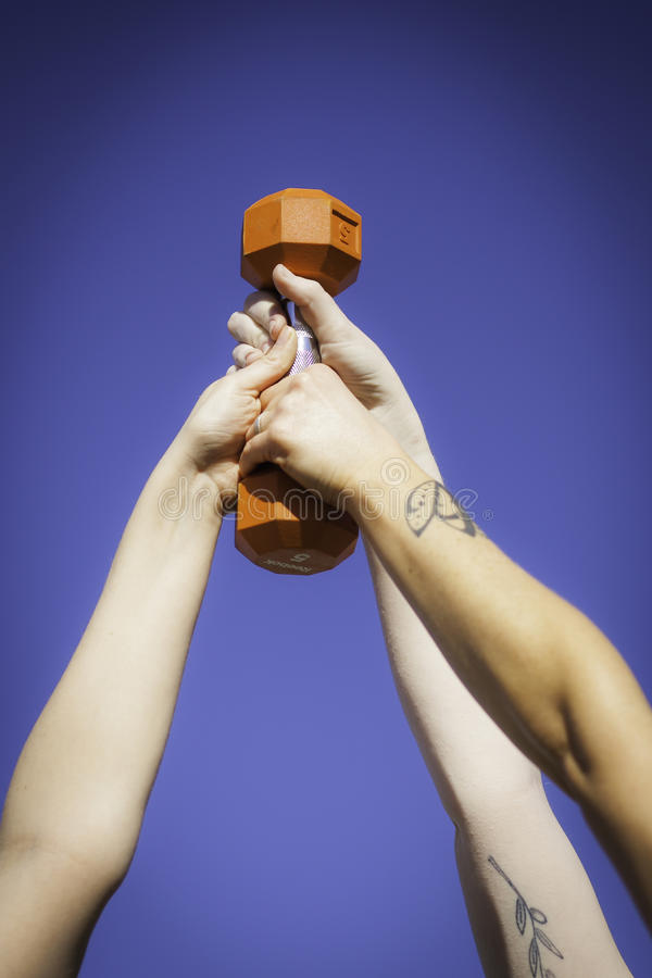 Three hands hold barbell royalty free stock photography