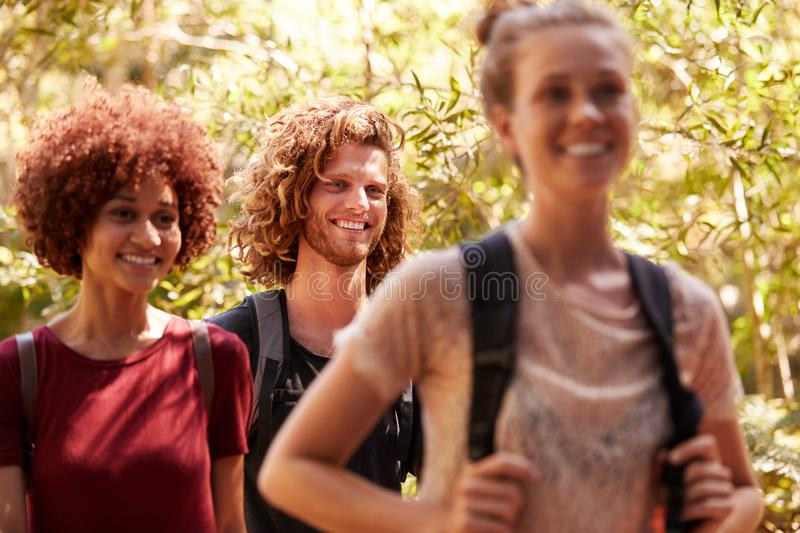 Three happy millennial friends wearing rucksacks on a hike in a forest, close up royalty free stock photography