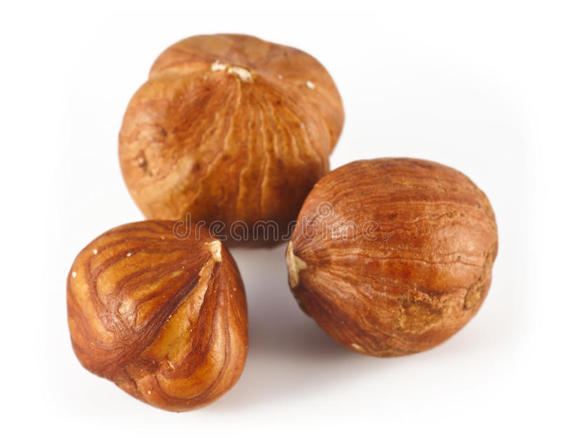 Download Three hazelnut stock image. Image of autumn, nutty, toughness - 21776169