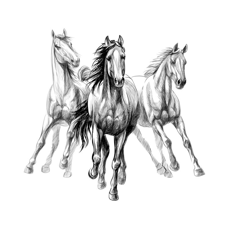 hold your horses examples - Clip Art Library