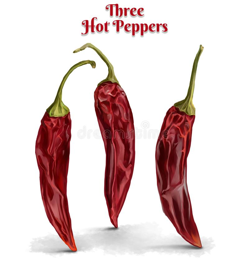 Three hot chili peppers stock illustration