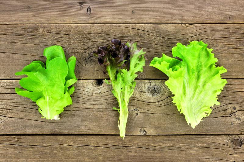 Three individual types of lettuce leaves, butter, red and green leaf, top view over wood. Three individual types of lettuce leaves, butter, red and green leaf stock photo