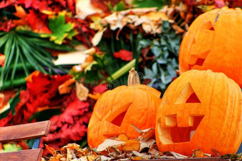 Three Jack-o-lantern pumpkins for Halloween royalty free stock images