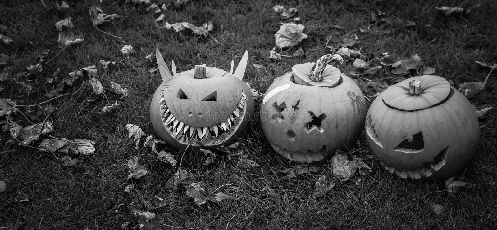 Three jack-o-lanterns in black and white stock images