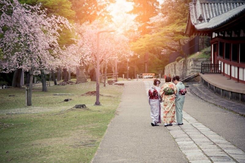 Three japanese girls wearing kimono walking in sakura garden stock photo