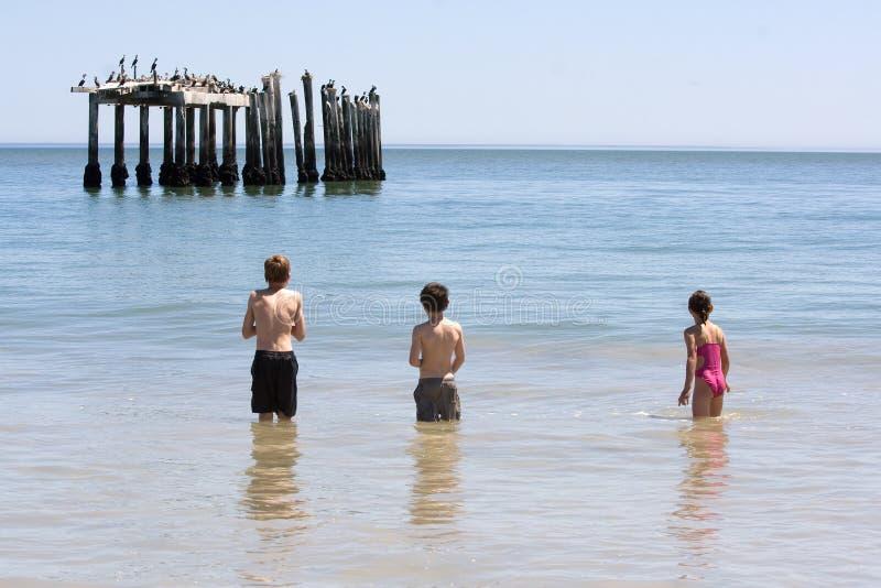 Download Three kids stock image. Image of cormorant, girl, costume - 6821435