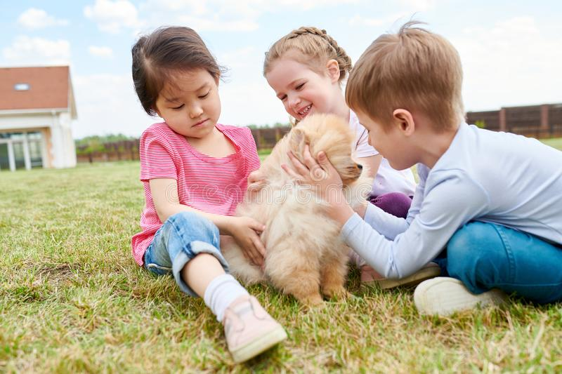 Three Kids Playing with Puppy royalty free stock photography