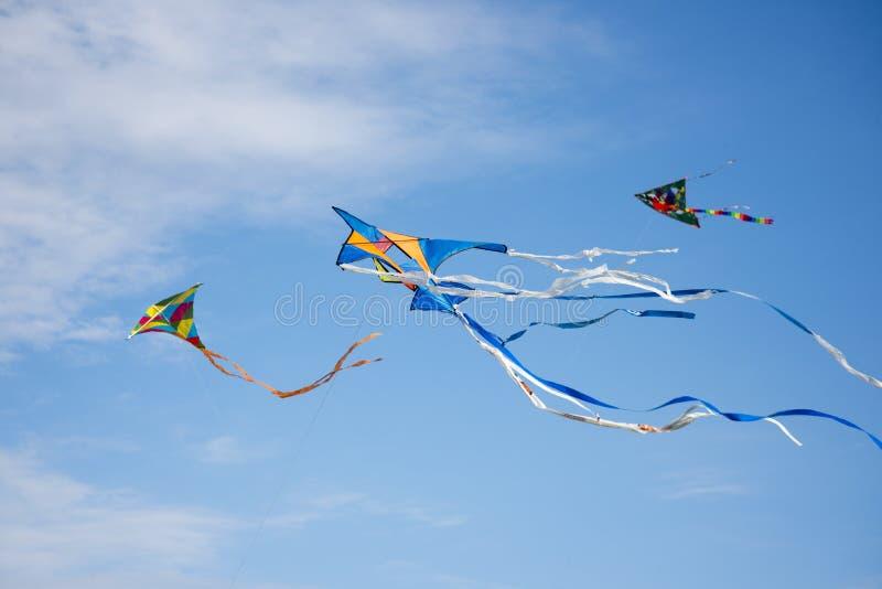 Three Kites royalty free stock photography