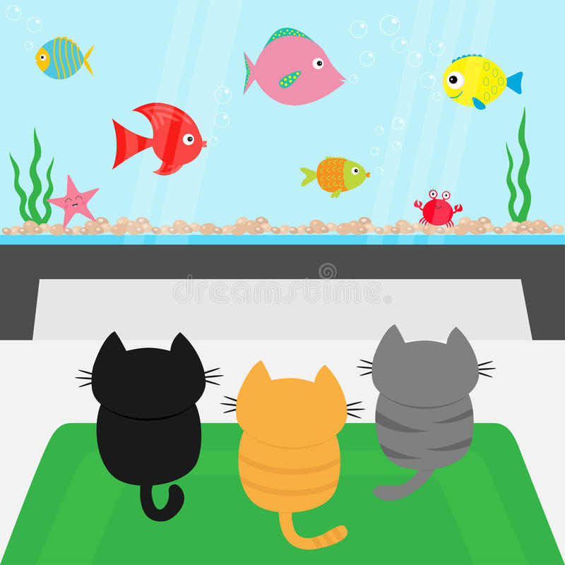 Three kittens on carpet rug looking to big aquarium with fish set. Little cat family. vector illustration