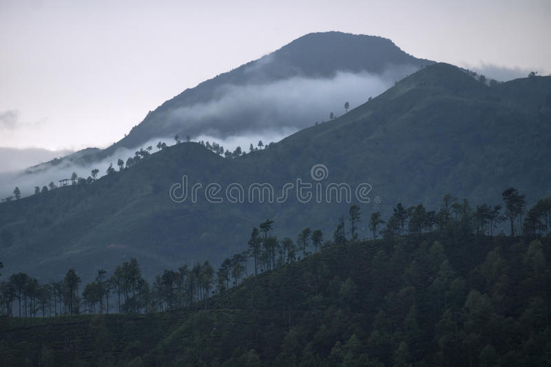 Three layers of mountains in the mist, Ella, Sri Lanka. Mountains in the mist in Ella royalty free stock image