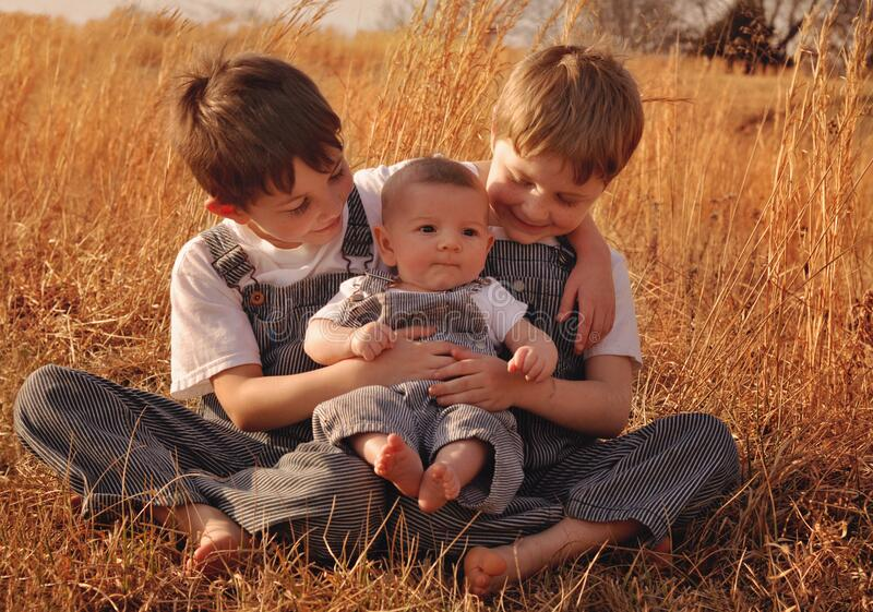 Three little boys in overalls. Three little boys wearing striped overalls in a field royalty free stock image