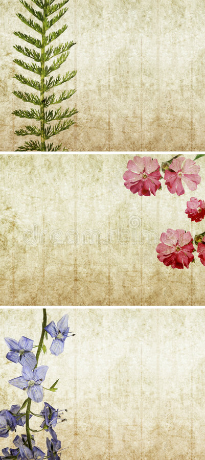 Download Three Lovely Background Textures Stock Photos - Image: 8031873