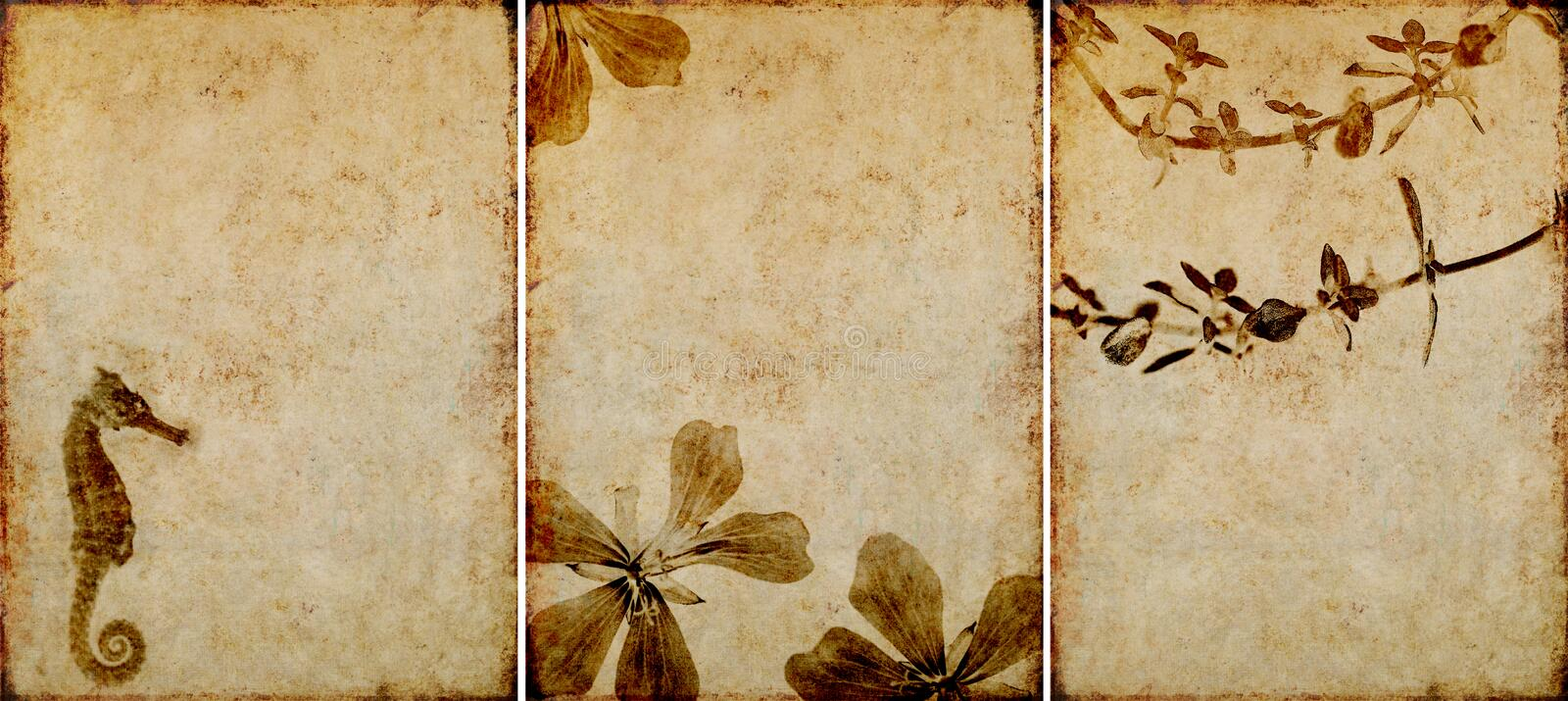 Three lovely background textures. Or banners. very useful design elements stock photo