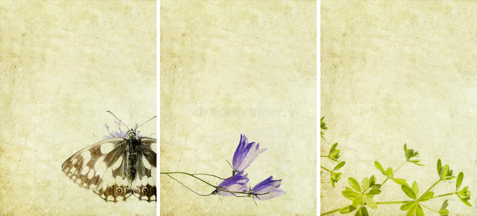 Three lovely background textures. Or banners. very useful design elements royalty free stock photo