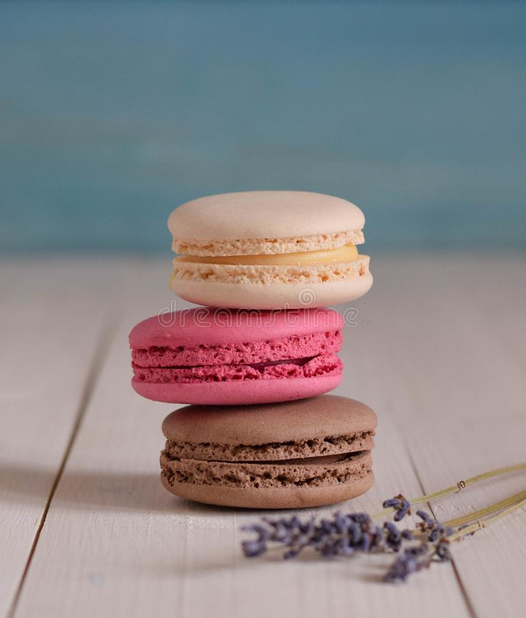 Three macaroons on the wood light table lavender macro close up stock photos