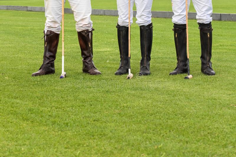 Three male horse polo players in white trousers and special boots for riding a horse. People stand on a green lawn. In. The legs of three male horse polo players stock photo