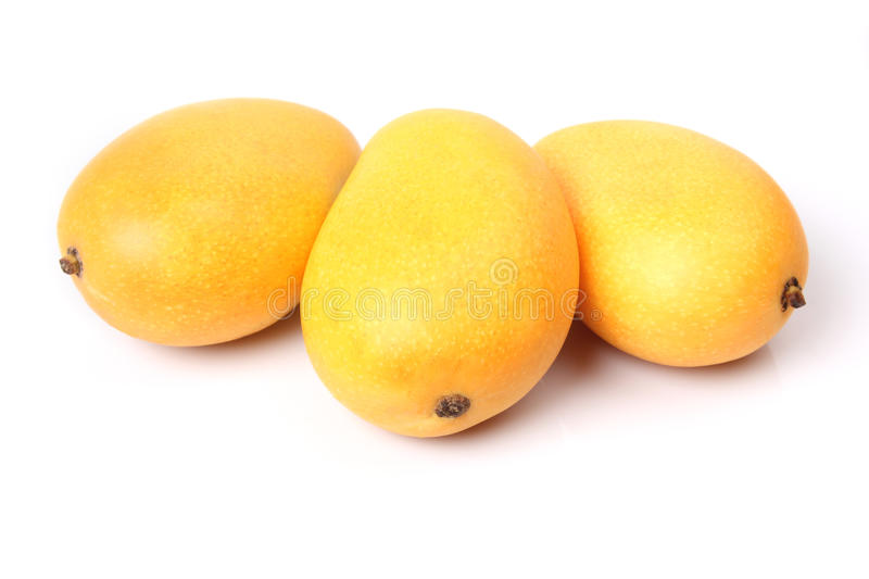 Three mango royalty free stock image