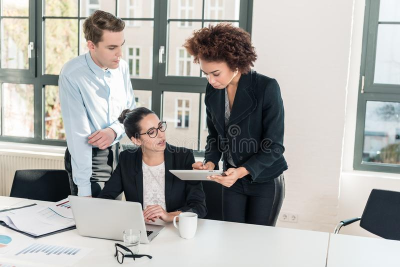 Three members of a young professional team working together royalty free stock photo