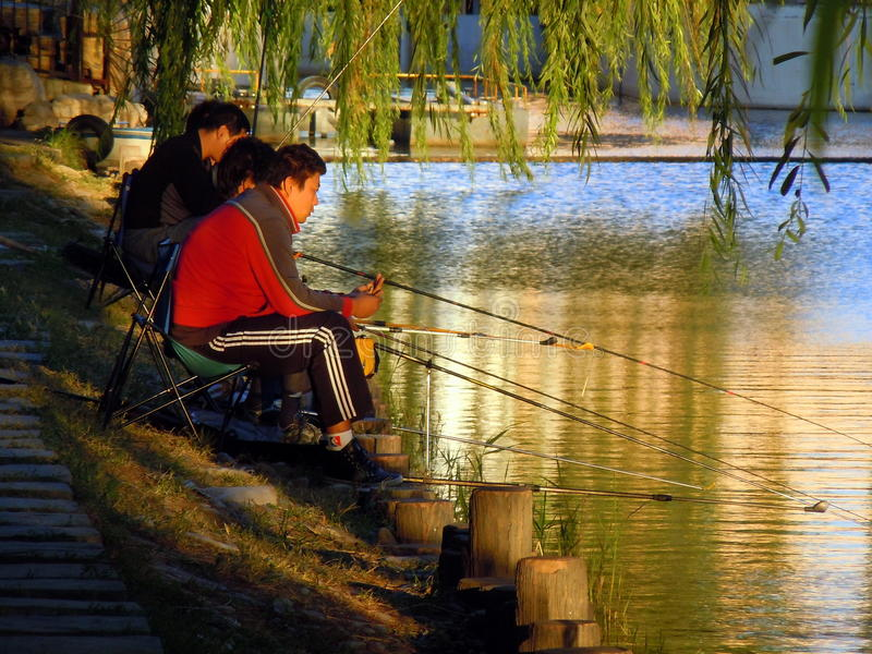 Three men fishing in lake royalty free stock images