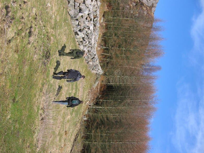 Three men tracking. Three menn tracking in nature royalty free stock photography