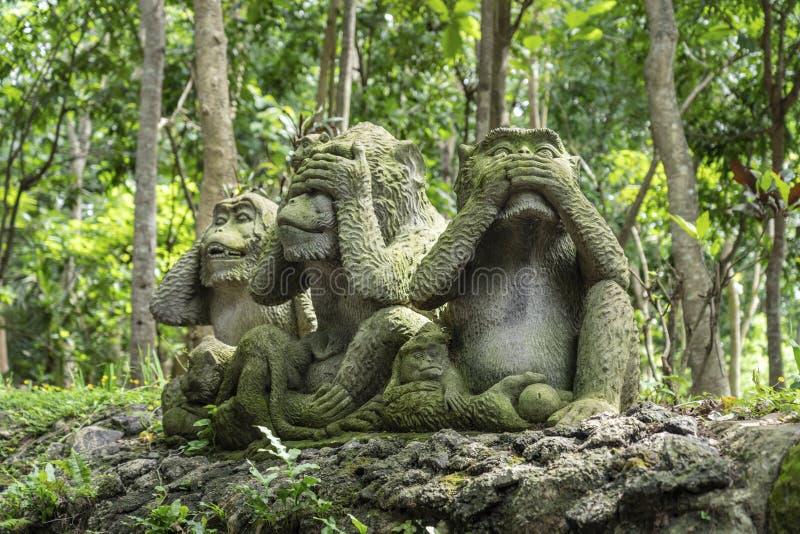 Denpasar, Indonesia - January 8, 2020: Three monkeys statue in Sacred Monkey Forest, Ubud, Bali, Indonesia. Three monkeys statue in Sacred Monkey Forest, Ubud royalty free stock photos