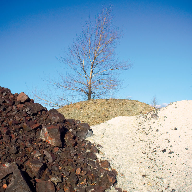 Three multi-color stone hills and naked tree. Shot in an iron open-cast mine, Poltavska Region, Ukraine royalty free stock images