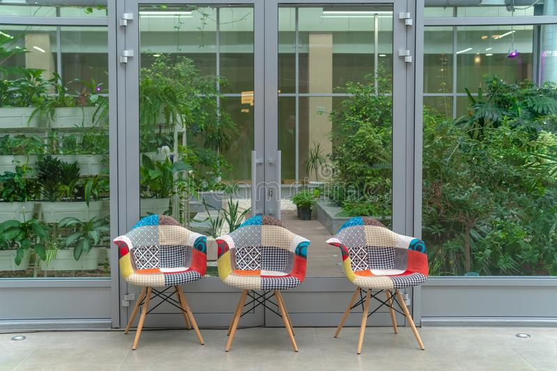 Three multi-colored chairs on the background of greenery indoors. Interior design. School stock photography