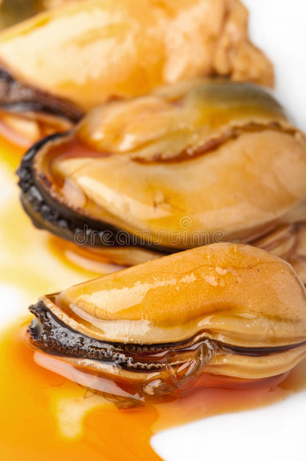 Three mussels on a white plate. royalty free stock images