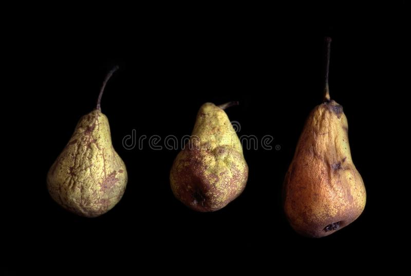 Three old pears royalty free stock image