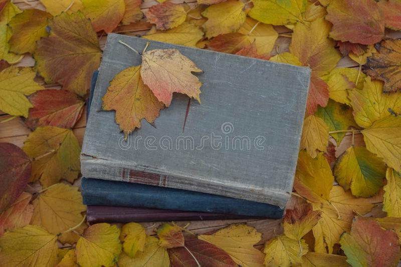 Last warm days. Three old, vintage books on a wooden table, covered with yellow, red, green, autumn, fallen maple leaves view from the top royalty free stock photos