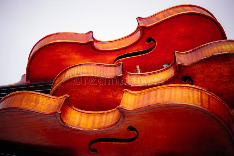 Three violins on a wihte background royalty free stock photography