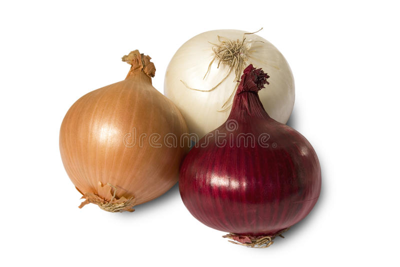 Three onions royalty free stock photo