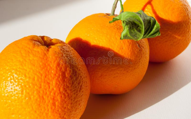 Three oranges with leaves side by side royalty free stock image