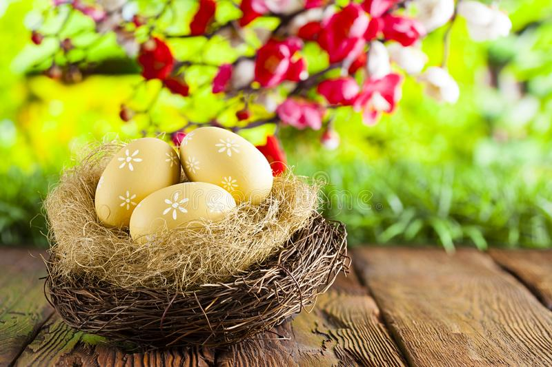 Three painted Easter eggs in the nest on table and nature background stock photography