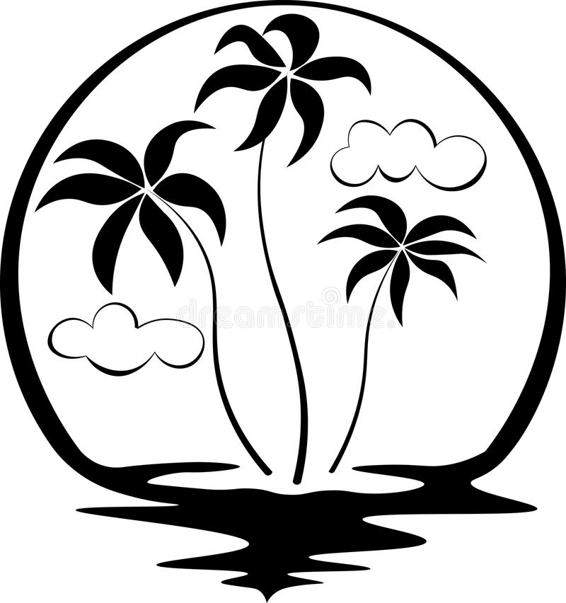 Palm Trees On Black And White Background. Tropical Palms ...