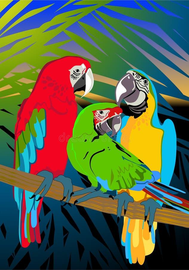 Download Three parrots stock illustration. Illustration of palm - 9853558