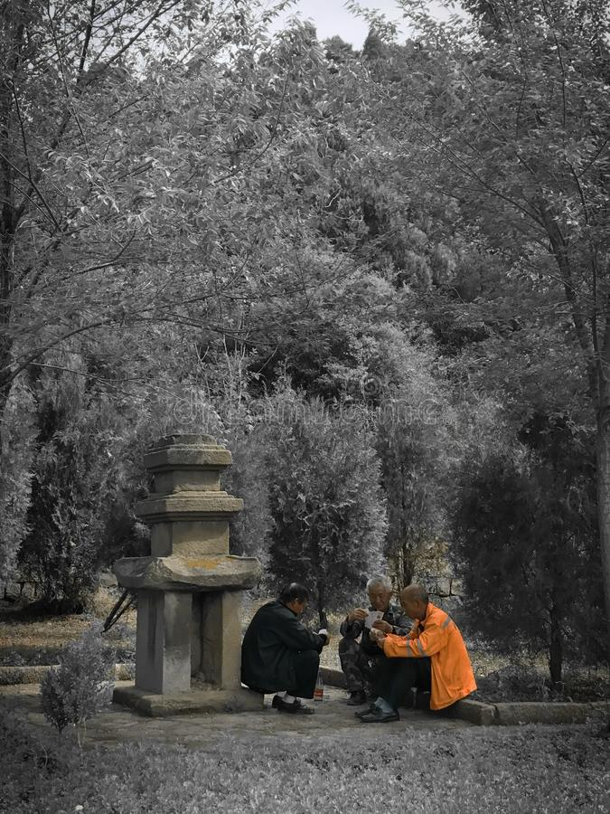 Three people playing cards in the dense forest, Hangzhou stock images