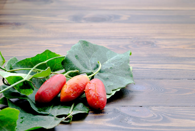 Three pieces of Red ripe ivy gourd with their green leaves stock photos