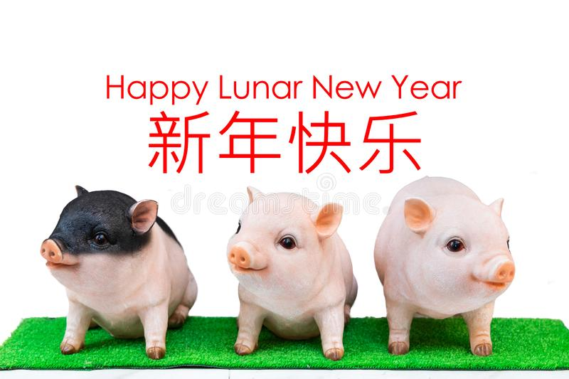 Three pig boar in white background with Happy Lunar New Year greeting text. Pig is 2019 Chinese New Year zodiac.  royalty free stock photography
