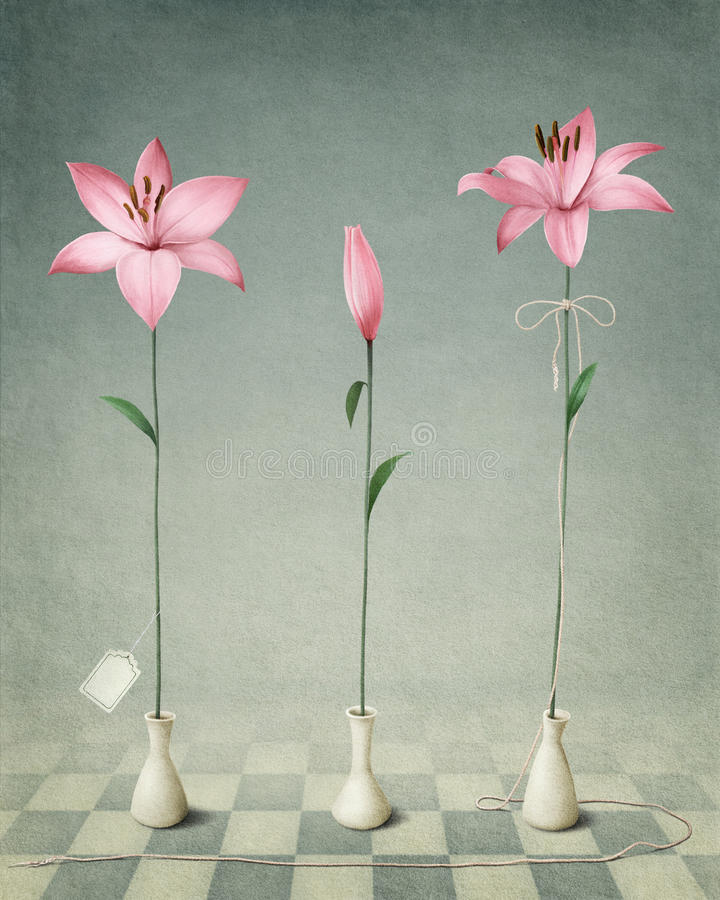 Three pink lily royalty free illustration