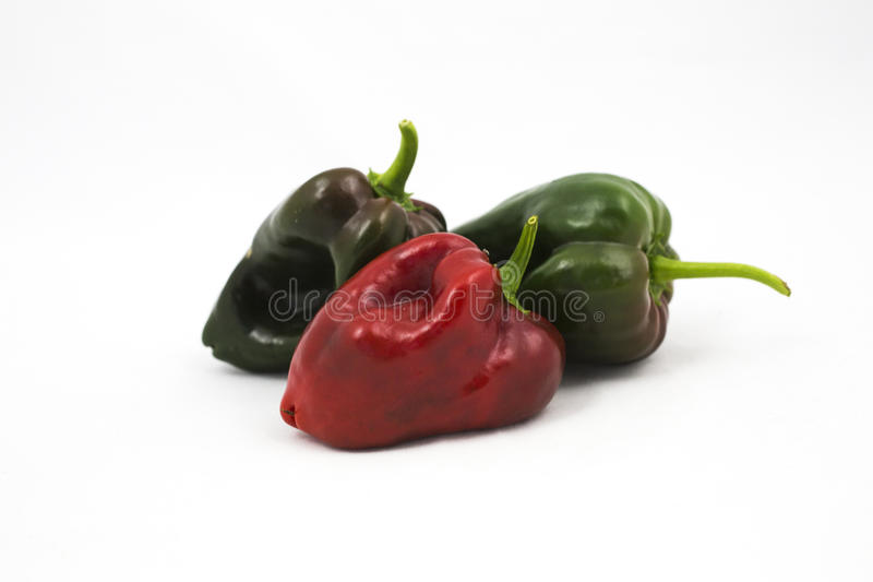 Three poblano chile peppers stock images