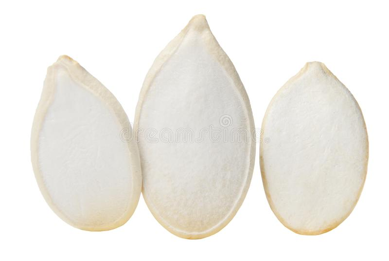 Three pumpkin seeds closeup isolated on white. Macro. Side view royalty free stock image