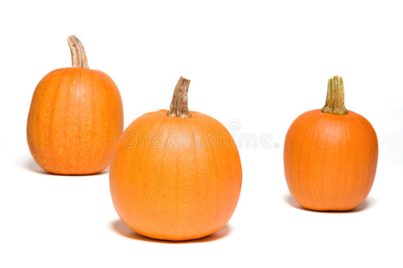 Download Three Pumpkins Stock Images - Image: 11290634