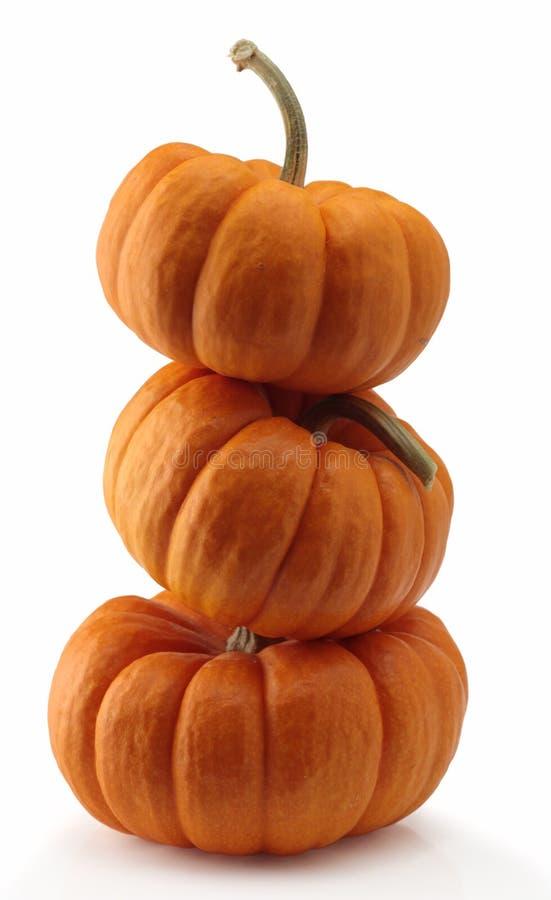 Three pumpkins royalty free stock image