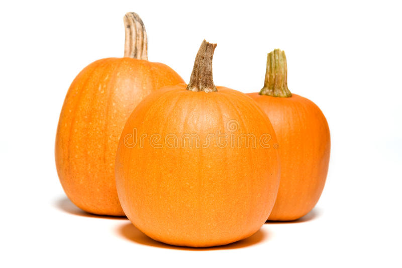 Three Pumpkins Close. Three pumpkins on white background ready for Halloween stock photography