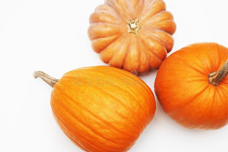 Three pumpkins isolated on white background. More images of this models you can find in my portfolio stock images