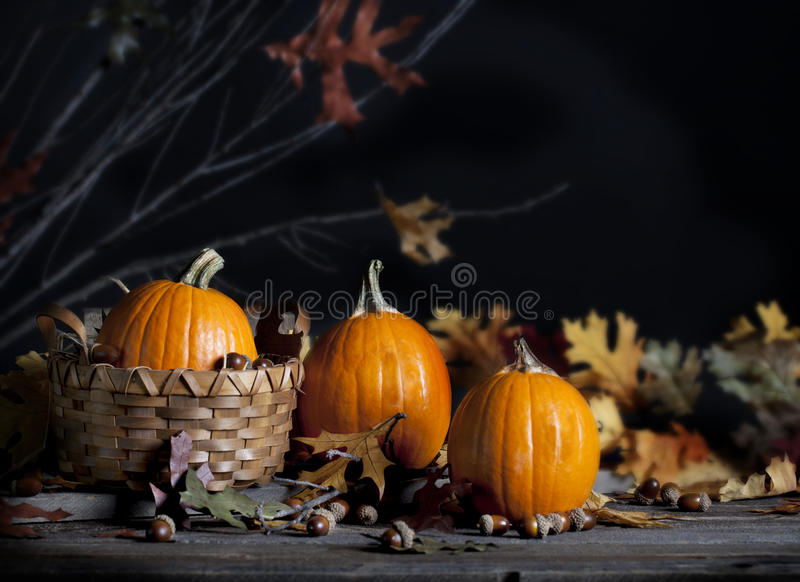 Three Pumpkins royalty free stock photography