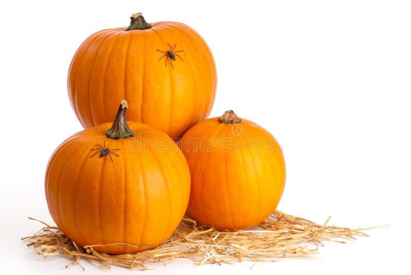 Three Pumpkins On Straw stock image